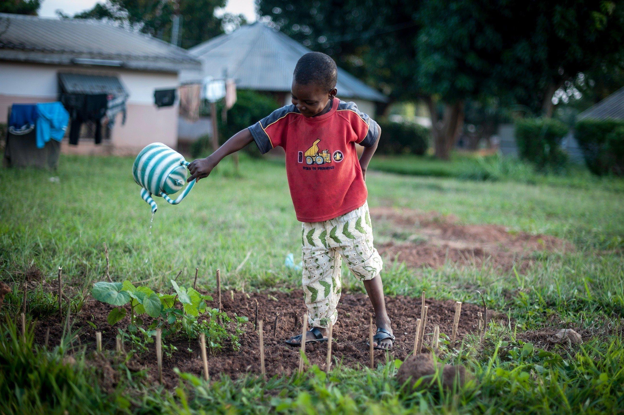 Afrikanischer Junge gießt ein kleines Beet.