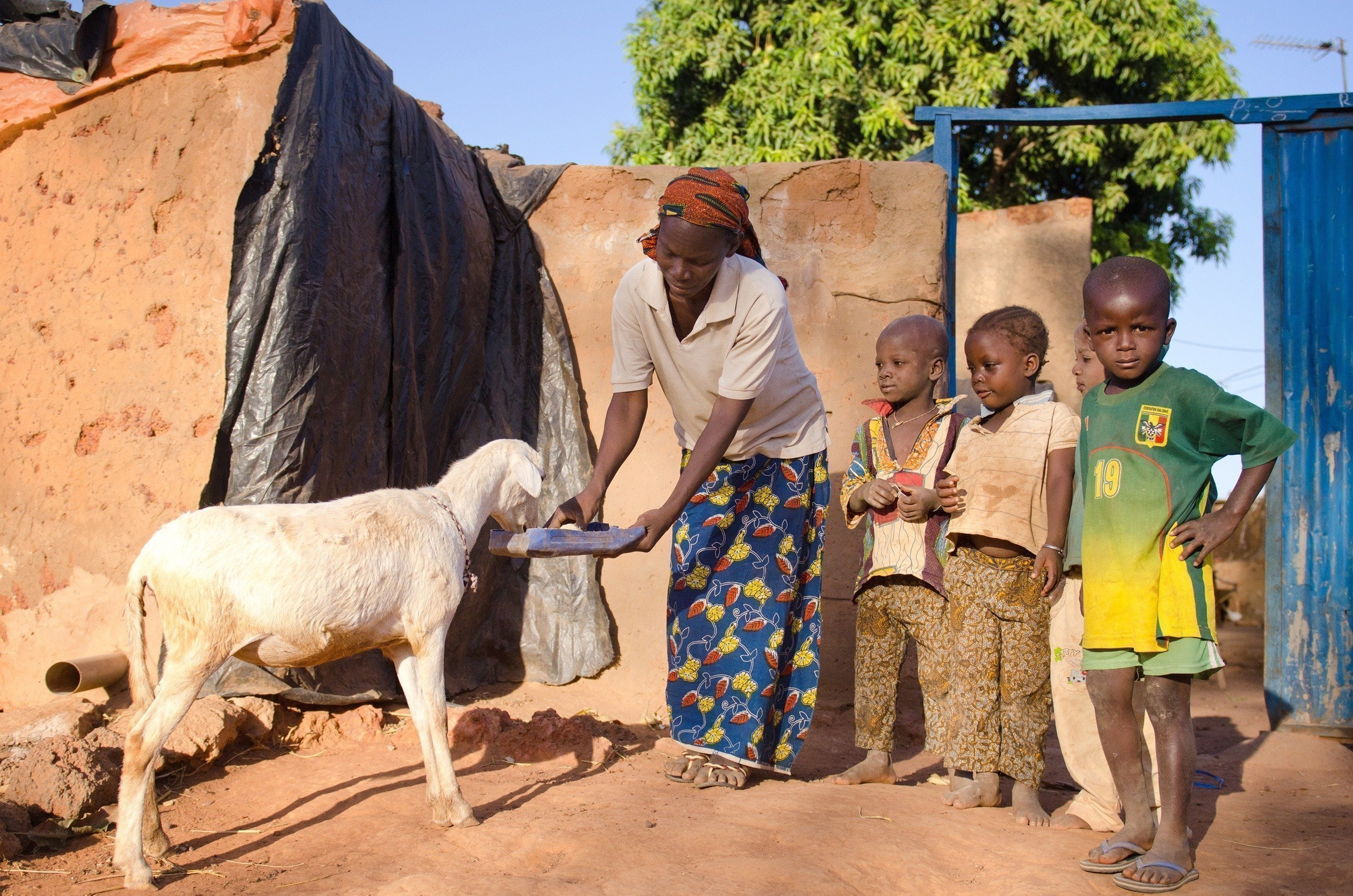 Mutter mit Kindern füttern eine Ziege.