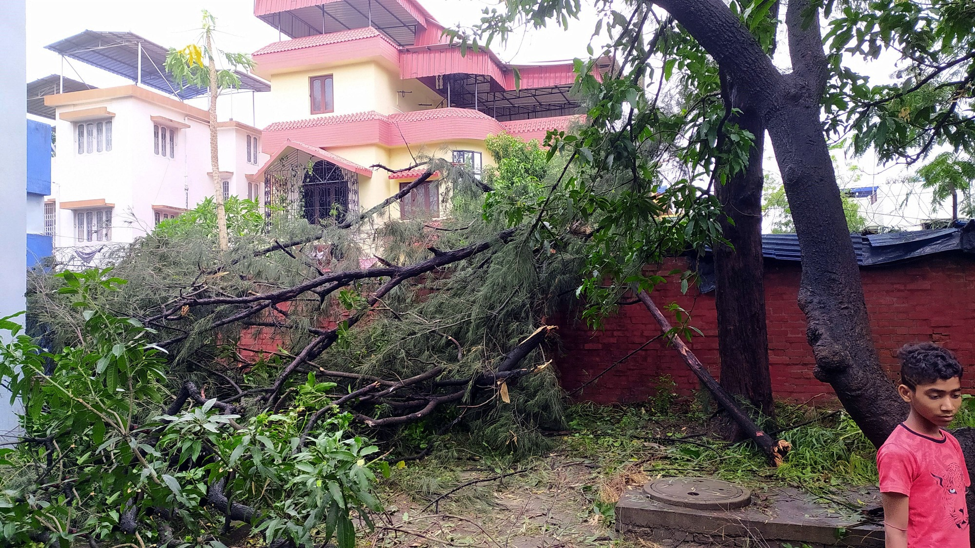 In Indien und Bangladesch richten die Zyklone massive Schäden an.